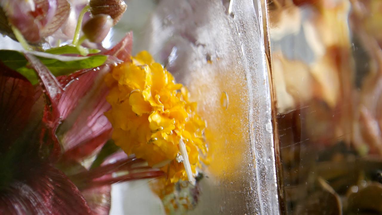 Ice flowers from Azuma Makoto