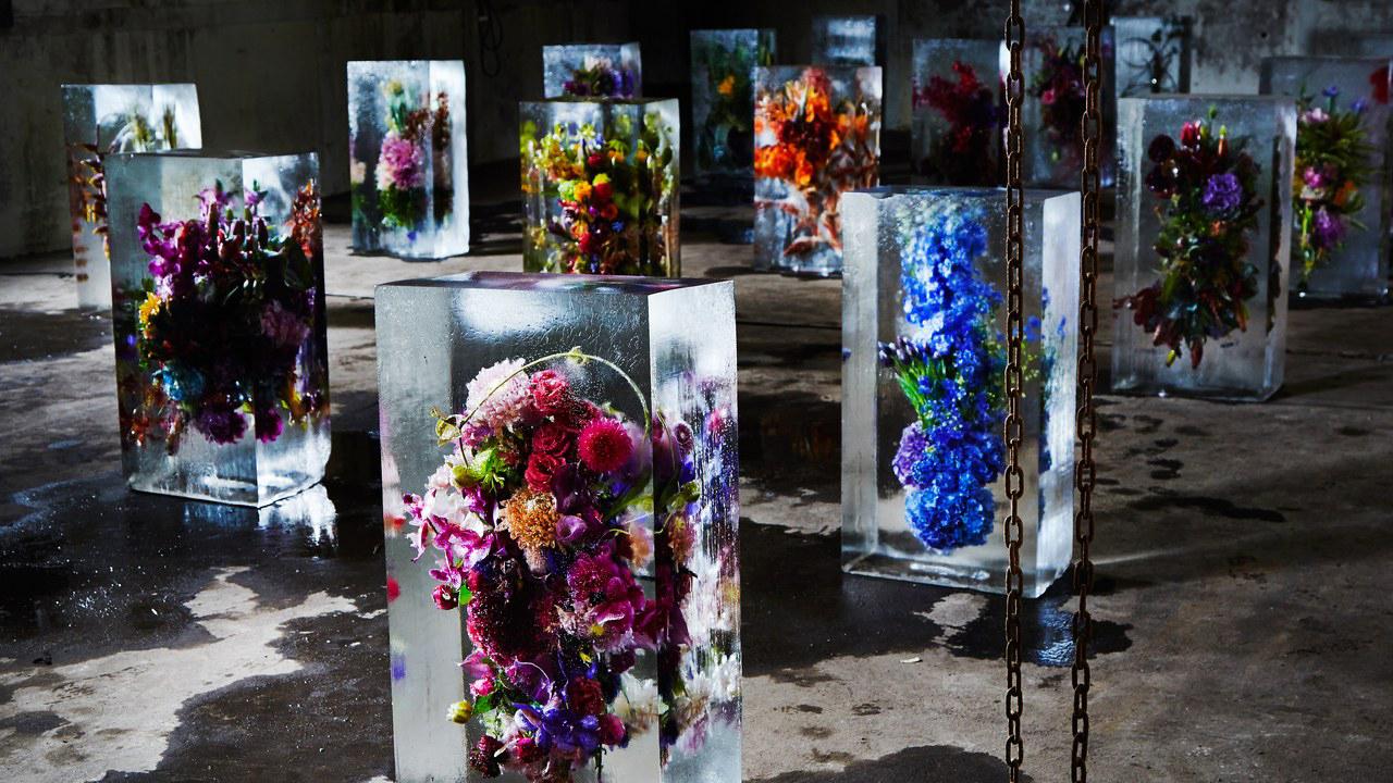 The Flower Council | EXPOSÉ serie